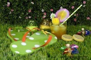 Garden Party Evenements
