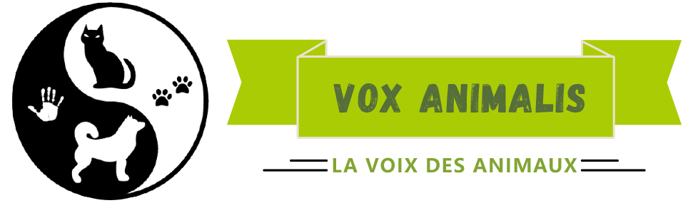 Comportementaliste animalier à Grenoble